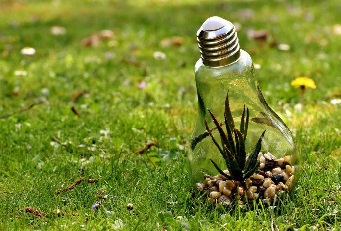 Hur man utför marksanering på ett hållbart och miljövänligt sätt